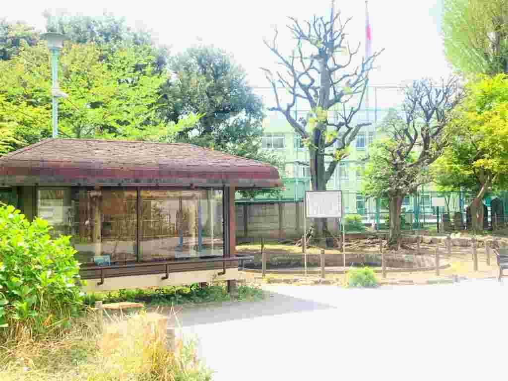 Sarugaku Ancient Residence Park